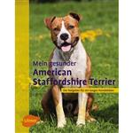 American Staffordshhire Terrier - Williams    Ulmer