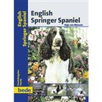 English Springer Spaniel Bede-Verlag