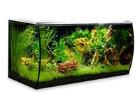Fluval Flex - LED Aquariumset weiß - 123L
