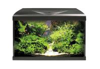 Amtra Aquarium Systems 60 LED schwarz - 60 Liter