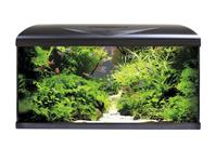 Amtra Aquarium Systems 80 LED schwarz - 80 Liter