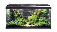 Amtra Aquarium Systems 80 LED schwarz +Fels Rückwand - 85 L