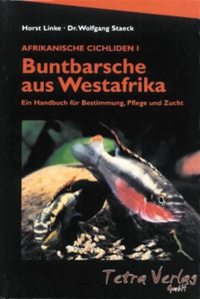 Buntbarsche aus West- afrika