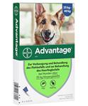 Advantage 400 Hund 4x 4,0 ml