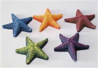 "Decor ""Star Fish"" ca.85mm sortiert"