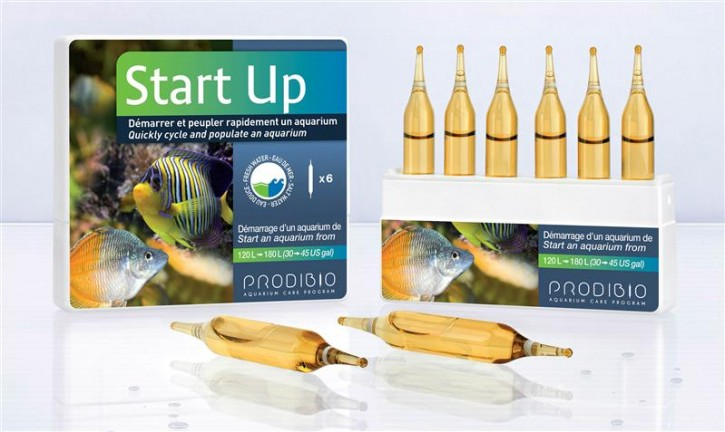 Start up 6 Ampullen Bakterienstarter f. 120L