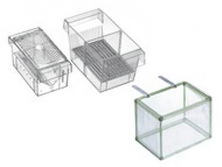 Ablaichkasten 3 in 1 transparent 16x8x8cm